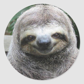 Cute Sloth Face Classic Round Sticker