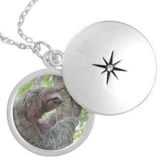 Cute Sloth Round Locket Necklace
