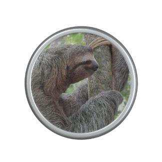 Cute Sloth Bluetooth Speaker