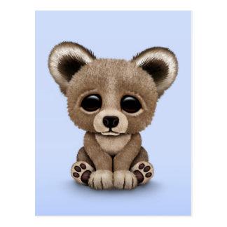 Cute Small Baby Bear Cub on Blue Postcard