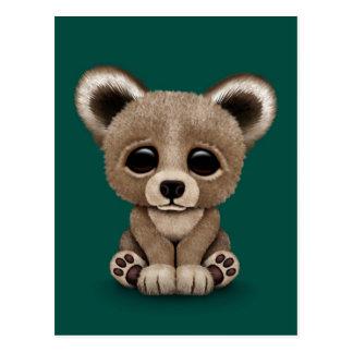 Cute Small Baby Bear Cub on Teal Blue Postcard