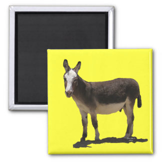 Cute Small Burro - Donkey 2 Inch Square Magnet