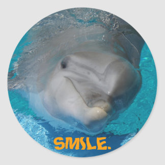 Cute smiling dolphin classic round sticker