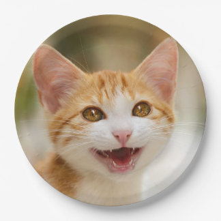 Cute Smiling Kitten Funny Cat Meow, Happy Party Paper Plate