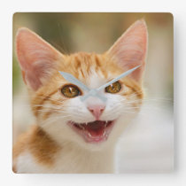 Cute Smiling Kitten Funny Cat Meow Photo - acrylic Square Wall Clock