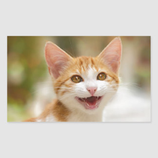Cute smiling kitten funny cat meow rectangular sticker