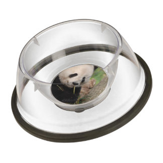 Cute Smiling Panda Pet Bowl