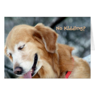 Cute Sneaky Dog Greeting Card