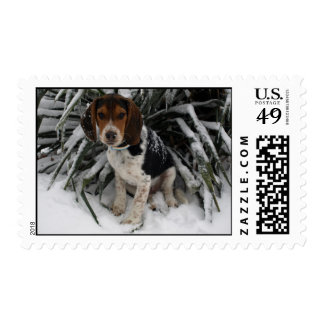 Cute Snoopy Beagle Puppy Dog in Snow Postage