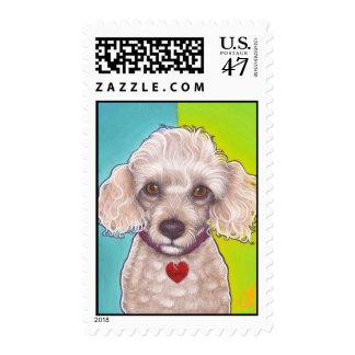 Cute snoot poodle stamp