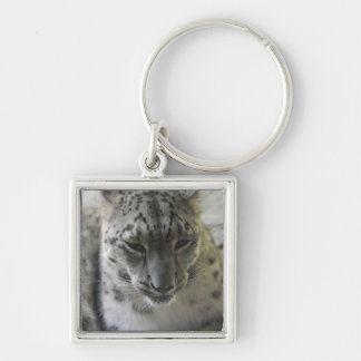 Cute Snow Leopard Silver-Colored Square Keychain