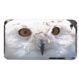 Cute Snowy Owl Eyes Wildlife Photo Barely There iPod Case