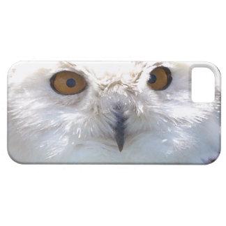 Cute Snowy Owl Eyes Wildlife Photo iPhone SE/5/5s Case