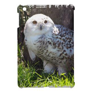Cute Snowy Owl Wildlife Photo Case For The iPad Mini