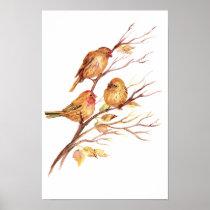 Cute Song Sparrow, Bird, Garden, Animal Nature Poster