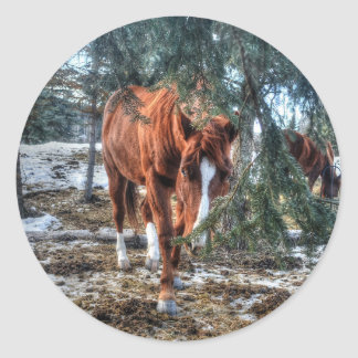 Cute Sorrel Mare and Branches Horse-lover Gift Classic Round Sticker