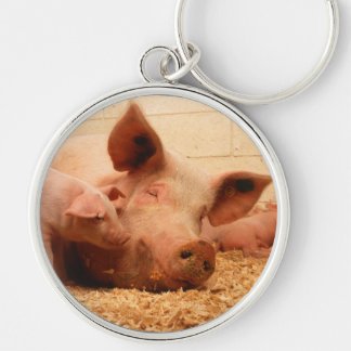 Cute Sow with Piglets Keychain
