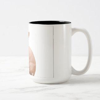 Cute sphynx cat Two-Tone coffee mug