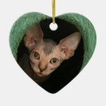 Cute sphynx kitten christmas ornaments