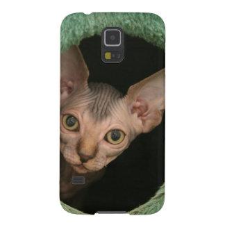 Cute sphynx kitten galaxy s5 case