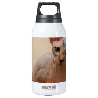 "Cute sphynx kitten ""I'm furless, are you?"" Insulated Water Bottle"