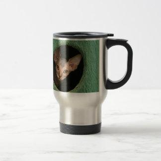 Cute sphynx kitten travel mug