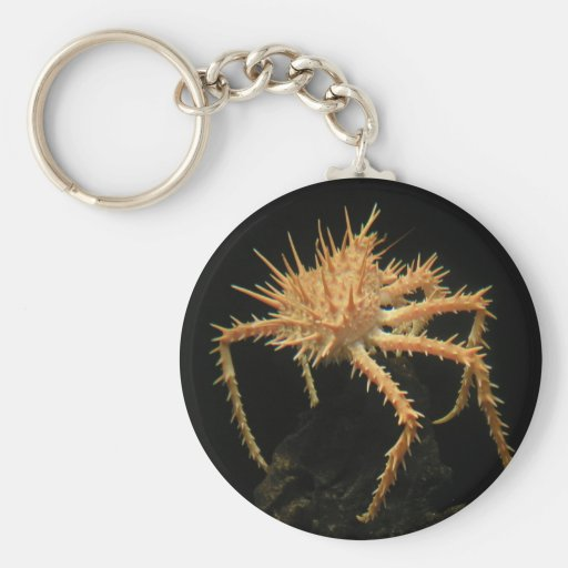 Cute Spiny Crab In The Aquarium At California Key Chain