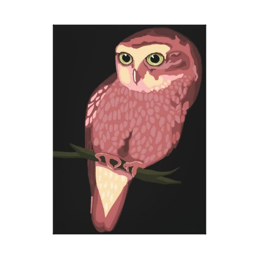 Cute Spotted Owl Gallery Wrapped Canvas