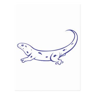 Cute Spotted Salamander Postcard