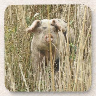 Cute Spotty Pig Cork Coaster