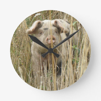 Cute Spotty Pig Wall Clock