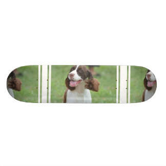 Cute Springer Spaniel Skate Board Decks