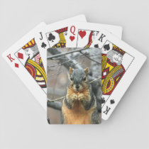Cute squirrel and his nut playing cards