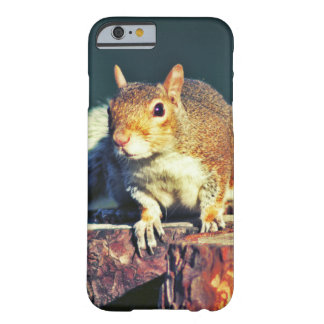 Cute Squirrel Barely There iPhone 6 Case