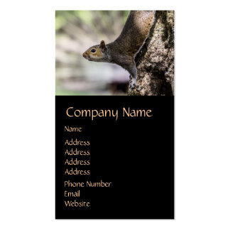 Cute Squirrel Double-Sided Standard Business Cards (Pack Of 100)