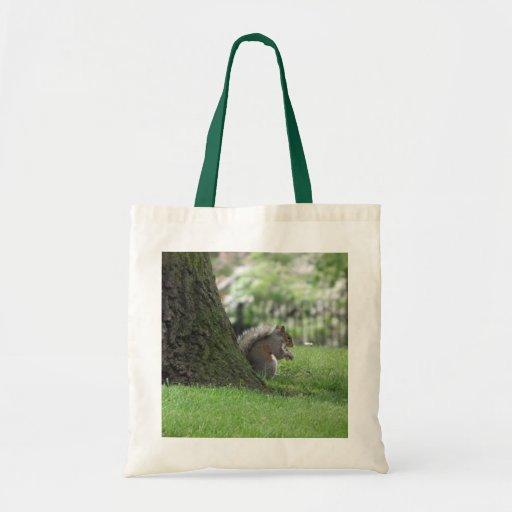 Cute Squirrel Canvas Bag