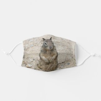 Cute Squirrel Cloth Face Mask