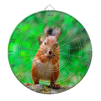 Cute squirrel dartboard