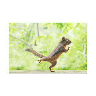 Cute Squirrel Doing Tai Chi Gallery Wrapped Canvas