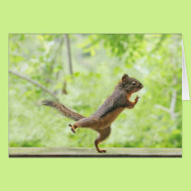 Cute Squirrel Doing Tai Chi Card