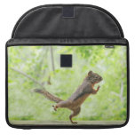 Cute Squirrel Doing Tai Chi MacBook Pro Sleeves