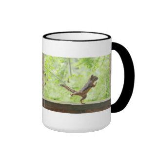 Cute Squirrel Doing Tai Chi Ringer Coffee Mug