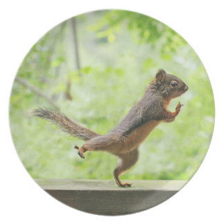 Cute Squirrel Doing Tai Chi Party Plate