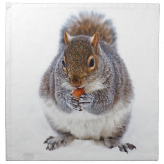 Cute squirrel eating a nut in snow napkin