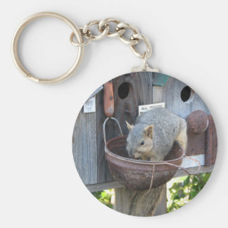 Cute Squirrel Eating Nuts Basic Round Button Keychain