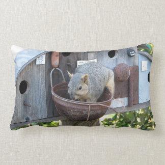 Cute Squirrel Eating Pillow