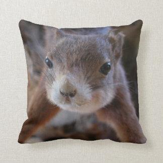 Cute Squirrel Face Pillow Pillow