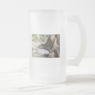 Cute Squirrel Frosted Glass Beer Mug