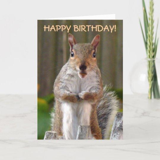 Cute Squirrel Happy Birthday Card Zazzle