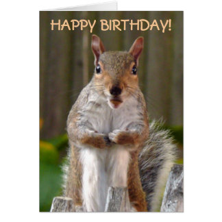 Cute Squirrel Happy Birthday Card